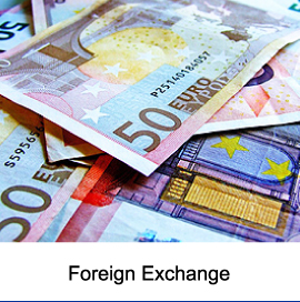 Savings on Foreign Exchange Rates